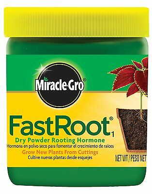 Miracle-Gro FastRoot Dry Powder Rooting Hormone Jar, 1-1/4-Ounce 4.2 1006451