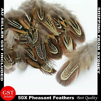 50pcs Natural Brown Pheasant Feathers 5-8cm DIY Wedding Craft Party Decoration