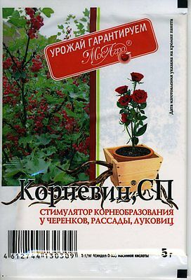 """Stimulator of root formation """"Kornevin"""" 4g Russian High Quality"""