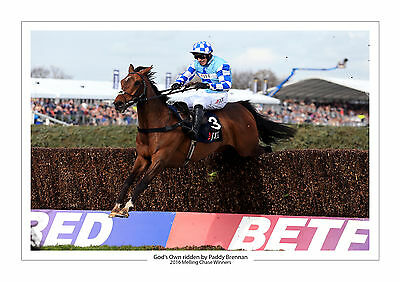 God's Own Paddy Brennan Aintree Melling Chase 2016 Horse Racing A4 Print Photo