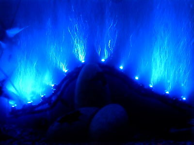Interpet Led Aquarium Bubble Wand Airstone Wall Fish Tank Blue Light Lighting