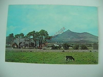 Northern Ireland B Postcard Mourne Mountains Co Down  018