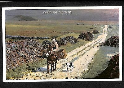 Ireland Postcard Irish Country Life Series Going For The Turf  E0 010