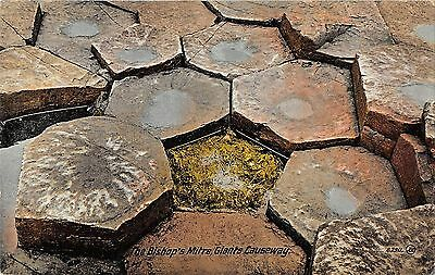 Northern Ireland Postcard Giants Causeway The Bishops Mitre  F0 038