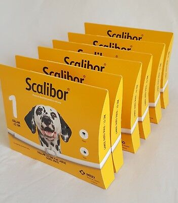 6 boxes Scalibor Dog Collar 6months 65cm kill prevent Fleas Ticks Protector Band