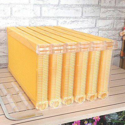 6Pcs Auto Flow Frames To Harvest Raw Honey Kits For Beekeeping Super / Brood Box