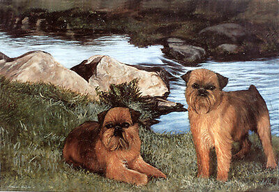"""GRIFFON BRUXELLOIS BRUSSELS BELGIAN DOG ART LIMITED EDITION PRINT """"By the River"""""""