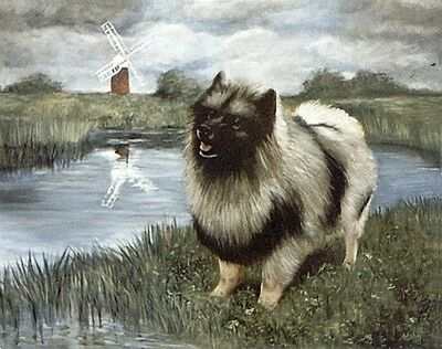 "KEESHOND DUTCH BARGE DOG ART LIMITED EDITION PRINT - ""At the Waters Edge"""