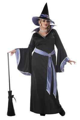 Brand New Plus Size Incantasia, The Glamour Witch Adult Halloween Costume