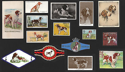 15 Welsh Springer Spaniel Collectable Dog Cigarette Trade Cards Bands And Stamps