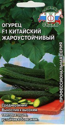 "Cucumber ""Chinese heat tolerance"" F1 Russian High Quality seeds"