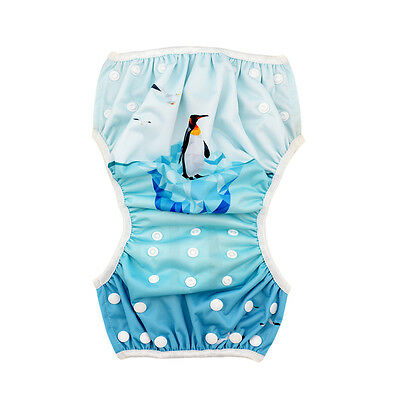 Alva Baby Boy Swimming Pool Pant  Diaper Washable Reusable Breathable cover
