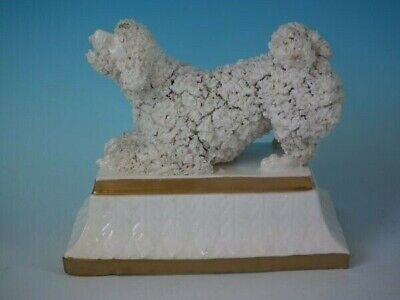 Large Staffordshire Pottery Poodle