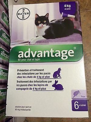 ADVANTAGE PURPLE for Cats Over 9 lbs (6-Pack)  - FAST FREE SHIPPING -