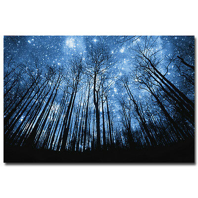 Night of The Winter Forest Nature Silk Poster Galaxy Space Stars Nebula