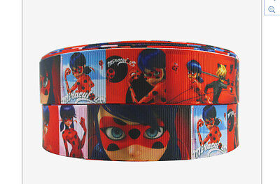 Miraculous Ladybug ribbon 1m long Cat Noir