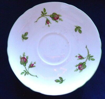 Shelley Porcelain White English Rose 13632  Saucer Green Border - Red Rose Buds