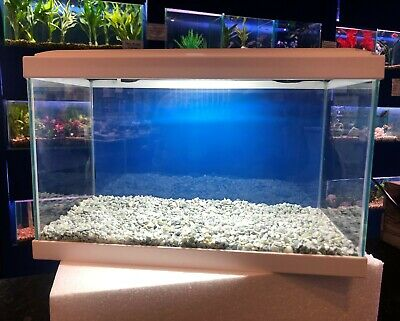 White Aquarium Lightsamp; Aqua Led Black Or Glass Ciano FilterPlant 17l 20 zpSMqVU
