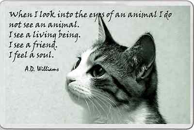 FRIDGE MAGNET Pet animal lover inspiring verse looking into a the eyes of a cat