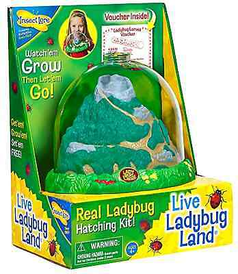 Insect Lore Ladybug Land Lady Bug Educational Farm for Kids Growing Toy Game New