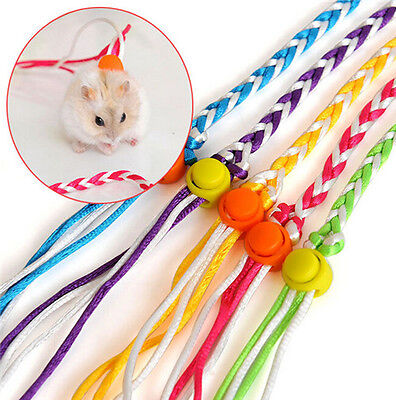 HOT Style Adjustable Ferret Harness/Baby Rabbit/Hamster Mouse Leash Lead Random