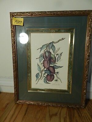 """Renee Dollar Pencil Signed and #209/1950 Lithograph """"Plums"""""""