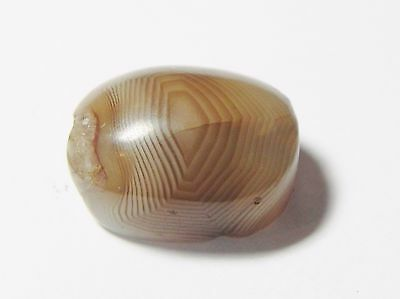 Zurqieh - Q318- Ancient Egypt, New Kingdom. Agate Scarab. 1400 B.c