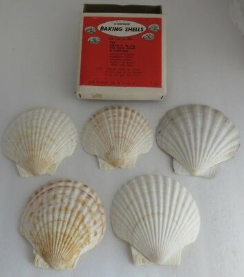 Vintage Set Of 4 Baking Natural Sea Shells                (Inv4210)