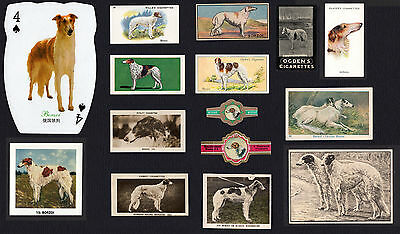 15 Borzoi Collectable Dog Cigarette And Breed / Trade Cards And Bands
