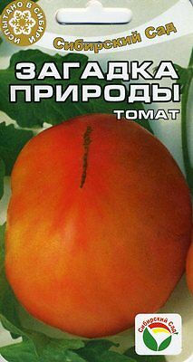 """Tomato """"The Riddle of Nature"""" (Siberian Garden)"""