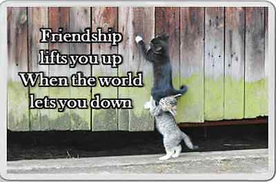 fridge magnet CAT Kitten Friendship quote supporting caring gift ANIMAL LOVER