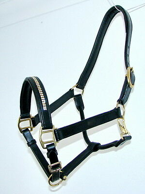FSS GLOW 2 Row CLEAR CRYSTAL Bling SILVER PIPING WHITE Padded HALTER HEADCOLLAR
