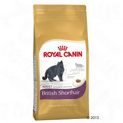 Cat Food Royal Canin British Shorthair Adult - Best prices!