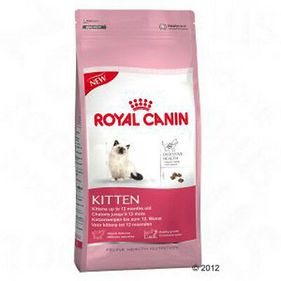 Cat Food Royal Canin Kitten - Digestive Health - Best prices!