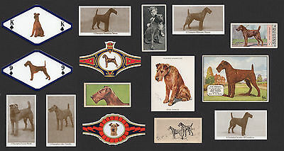 15 Irish Terrier Vintage Collectable Dog Cigarette Breed Trade Cards And Bands