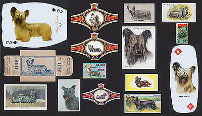 15 Skye Terrier Collectable Dog Cigarette Breed / Trade Cards Bands Stamps