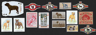15 Staffordshire Bull Terrier Collectable Dog Cigarette Breed Trade Cards Bands
