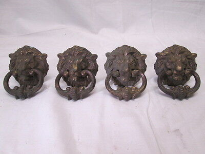 Set of 4 Vintage Brass Lion Head Handles Vertical Screws N4166 3-1/2""