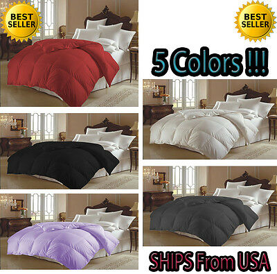 Goose Down Alternative Luxurious  Comforter Solid Colors Black, Burgundy,White