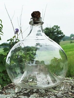 HAND BLOWN LATE 1800's GLASS FLY / WASP TRAP - FREE SHIPPING!