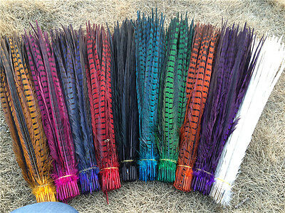 Wholesale! 10-100 Pcs 25 -55 cm / 10-22 inch natural pheasant tail feathers