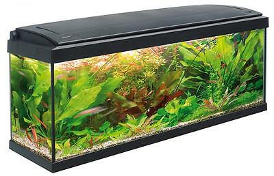 ACQUARIO milo vetro completo accessoriat100x30NEW POWER LIGHT T5 117lt