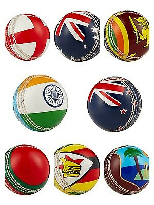 Hunts County International Cricket Flag Ball