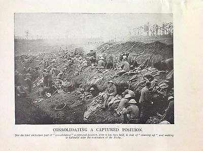 Serbia - Consolidating A Captured Position 1916 WW1 Vintage Print Photo