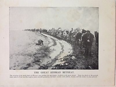 The Great Serbian Retreat 1915 WW1 Vintage Print Photo