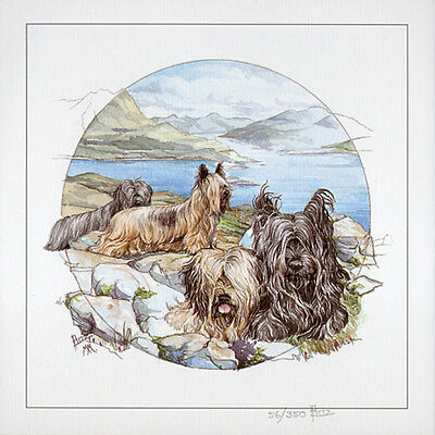 "SKYE TERRIER DOG FINE ART LIMITED EDITION PRINT - ""Skyes in the Round"""