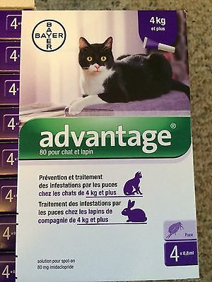 ADVANTAGE PURPLE for Cats Over 9 lbs (4-Pack)  - FAST FREE SHIPPING -