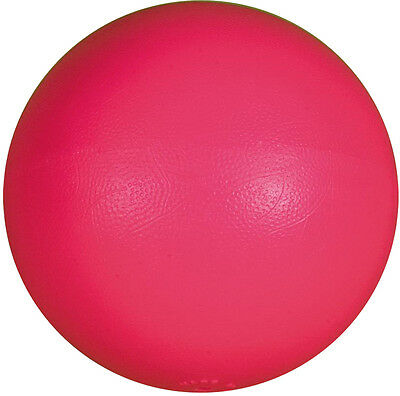 Primary Throwing Sports Soft PVC Durable Safe For Indoor Use Shot Put Ball