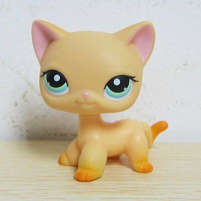 Littlest Pet Shop LPS Figure Toys Short Hair Tan Yellow Standing Kitten Cat #339