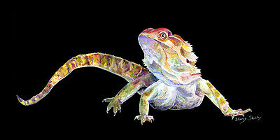BEARDED DRAGON 12X12 Art Giclee print on Stretched Canvas by Sherry Shipley